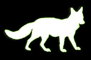 Schnitzeljagd in Nürnberg mit Foxtrail